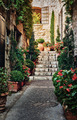 Narrow street with flowers in the old town - PhotoDune Item for Sale