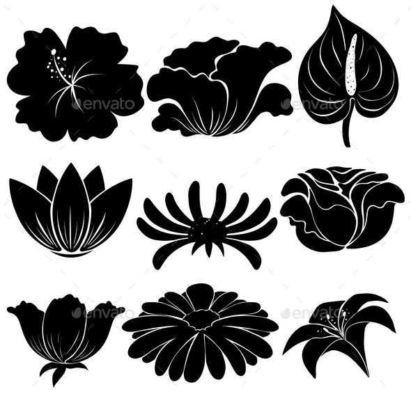 GraphicRiver Black Plants 11282039