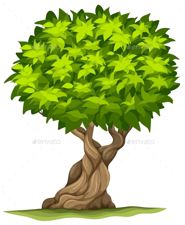 GraphicRiver Big Old Tree 11283231