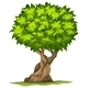 Big Old Tree - GraphicRiver Item for Sale