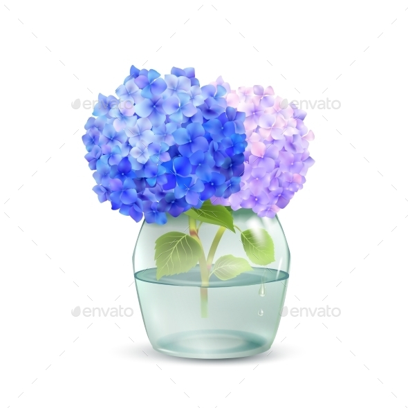 GraphicRiver Hydrangea In Jar 11285086
