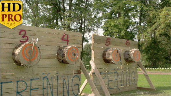 VideoHive Four Log Boards with Three Axes on Each 11285087