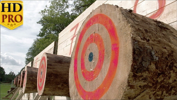VideoHive A Big Log with Circles on it on an Axe Competition 11285202