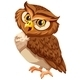 Brown Owl - GraphicRiver Item for Sale
