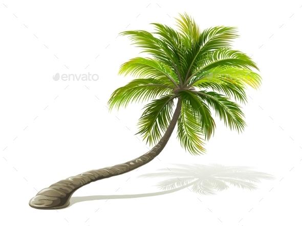 GraphicRiver Palm Tree 11291637