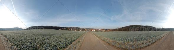 3DOcean HDRI Field 139487