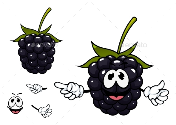 GraphicRiver Funny Ripe Blackberry Fruit Character 11296398