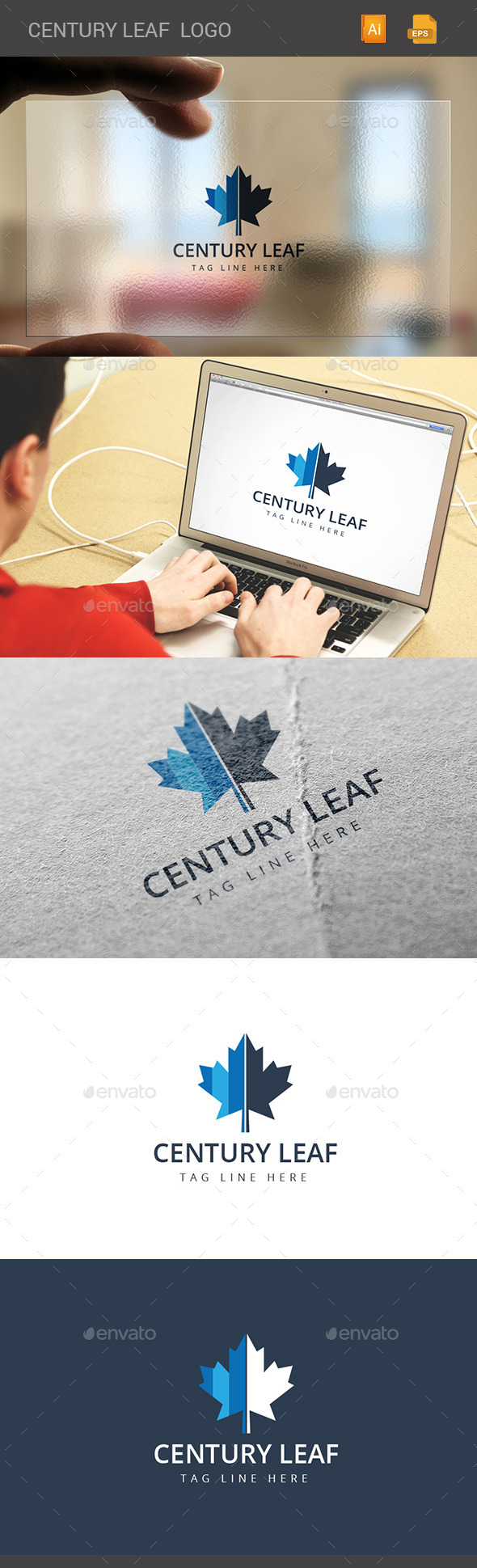 GraphicRiver Century Leaf Logo 11299214