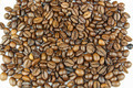 Roasted Coffee Beans on White 1 - PhotoDune Item for Sale