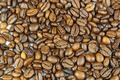 Roasted Coffee Beans on White 4 - PhotoDune Item for Sale