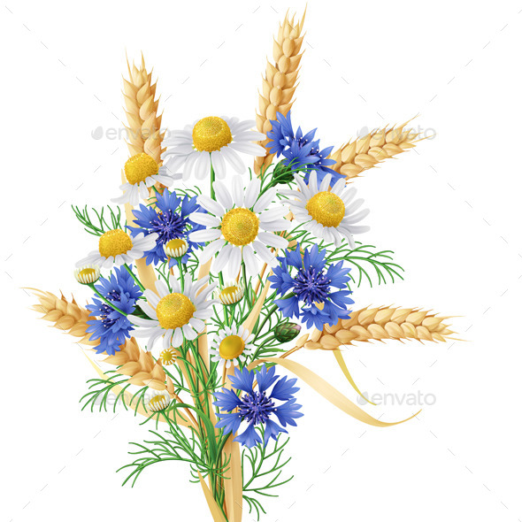 GraphicRiver Wild Chamomile Flowers 11301846