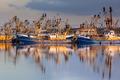 Dutch Fishery in Lauwersoog harbor - PhotoDune Item for Sale