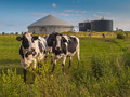Biogas plant on a farm - PhotoDune Item for Sale