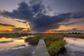 long exposure Footbridge in wetland - PhotoDune Item for Sale