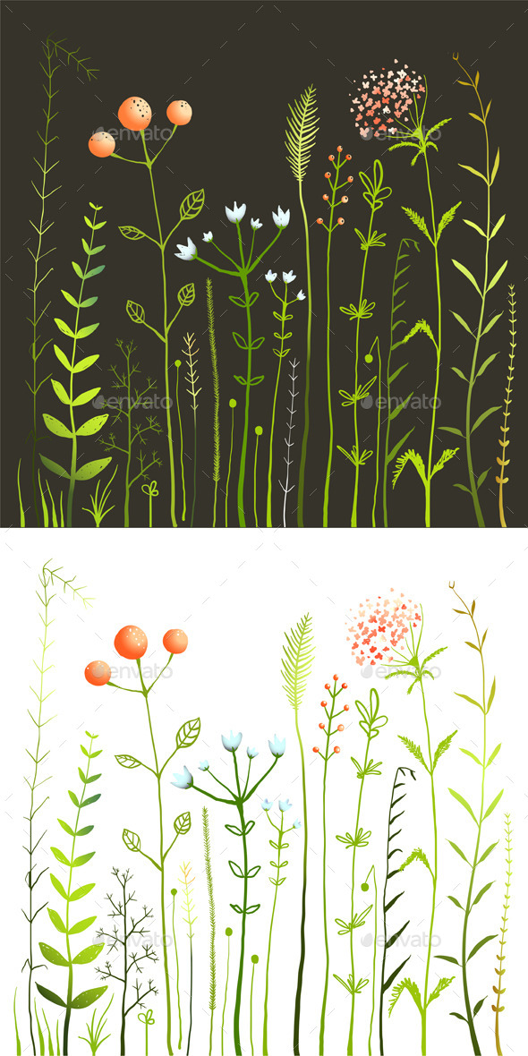 GraphicRiver Wild Flowers and Grass Field Collection 11302423