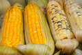 Corn on the Cob for Sale at Vendor's Stall - PhotoDune Item for Sale
