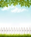 Nature background with green_leaves and white french.  - PhotoDune Item for Sale