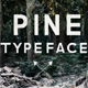 Pine Typeface - GraphicRiver Item for Sale