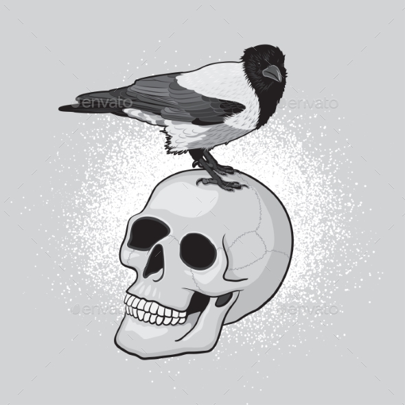 GraphicRiver Bird On Skull 11314424