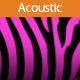 Gentle Acoustic
