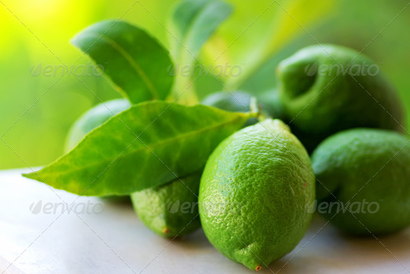 green lemons group - Stock Photo - Images