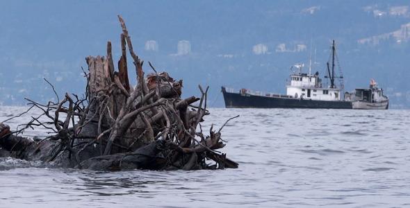 Sea Inlet Fishing Boats