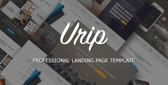 ThemeForest Urip Professional Landing Page 11317046