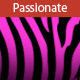 Passion - AudioJungle Item for Sale