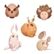 Vector Set Of Small Forest Cute Animals - GraphicRiver Item for Sale