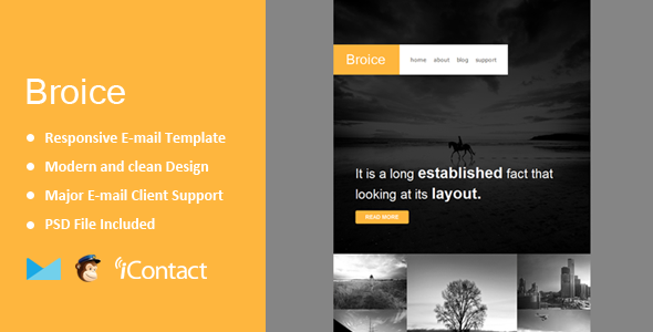 ThemeForest Broice Responsive E-mail Template & Themebuilder Access 11250426