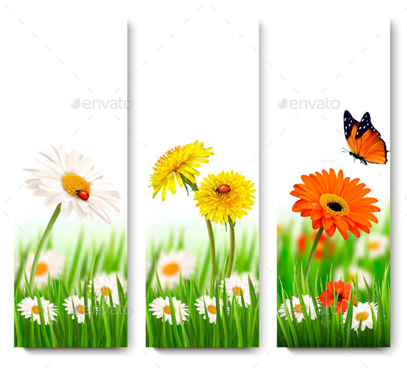 GraphicRiver Nature Banners With Colorful Summer Flowers 11317400