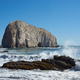Seabird Colonies on the Coast of Chile - PhotoDune Item for Sale
