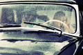 Young people driving retro car in the rain - PhotoDune Item for Sale