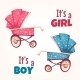 Vector Set Of Flat Baby Girl And Boy Carriage  - GraphicRiver Item for Sale