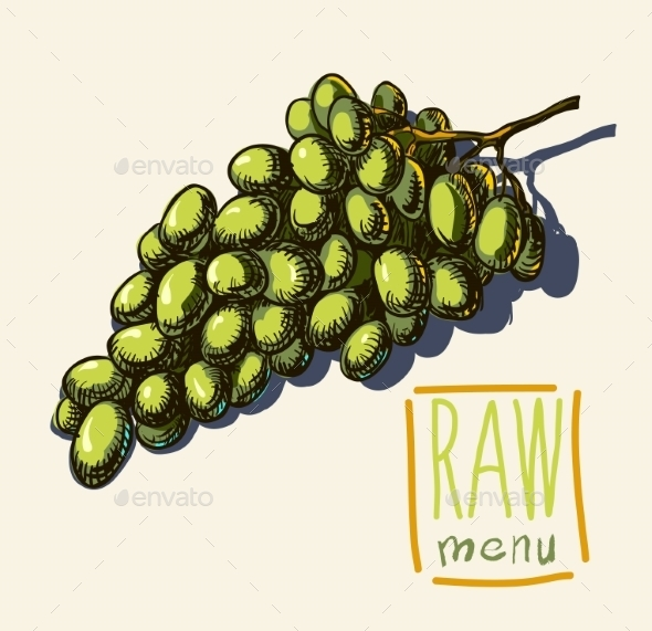 GraphicRiver Hand Drawn Vintage Illustration Of Grapes 11329240