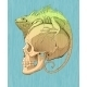 Colorfull  Iguana And Scull - GraphicRiver Item for Sale