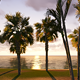 Sunrise In Paradise - VideoHive Item for Sale