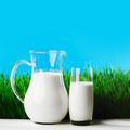 Milk jug and glass on grass field - PhotoDune Item for Sale