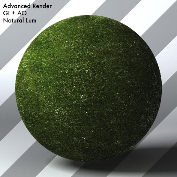 Grass Landscape Shader_005