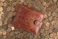 Leather Wallet on a background of Russian coins - PhotoDune Item for Sale