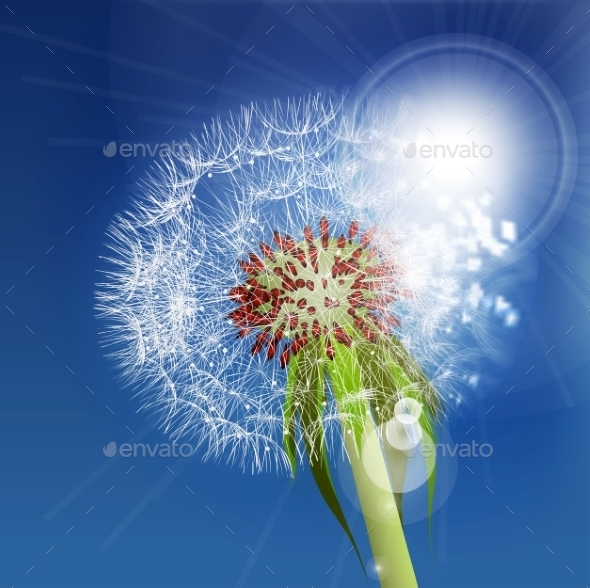 GraphicRiver Dandelion Seeds Blown In The Blue Sky 11352959