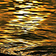 Golden Reflection on the Sea Waves 01 - VideoHive Item for Sale