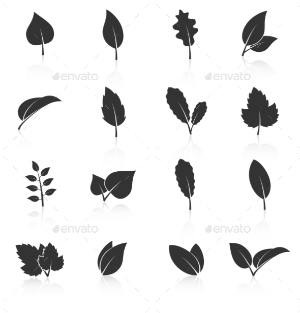 GraphicRiver Set Of Leaf Icons On White Background 11370305