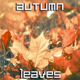 Autumn Leaves on Lawn in City Park - VideoHive Item for Sale