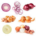 Onions Collection Isolated on White - PhotoDune Item for Sale