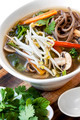 Hot and Sour Vegetable Soup with Soba Noodles and Bean Sprouts - PhotoDune Item for Sale