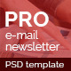 Professional E-mail Newsletter - GraphicRiver Item for Sale