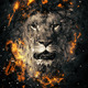 Download Lion from PhotoDune
