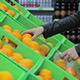 Girl Picks Oranges - VideoHive Item for Sale