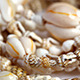 Sea Shells Necklace - VideoHive Item for Sale